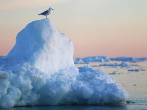 web-climate-change-getty